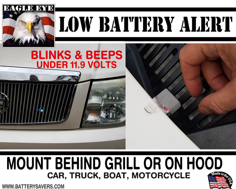 Eagle Eye 12 Volt Alarm Alert
